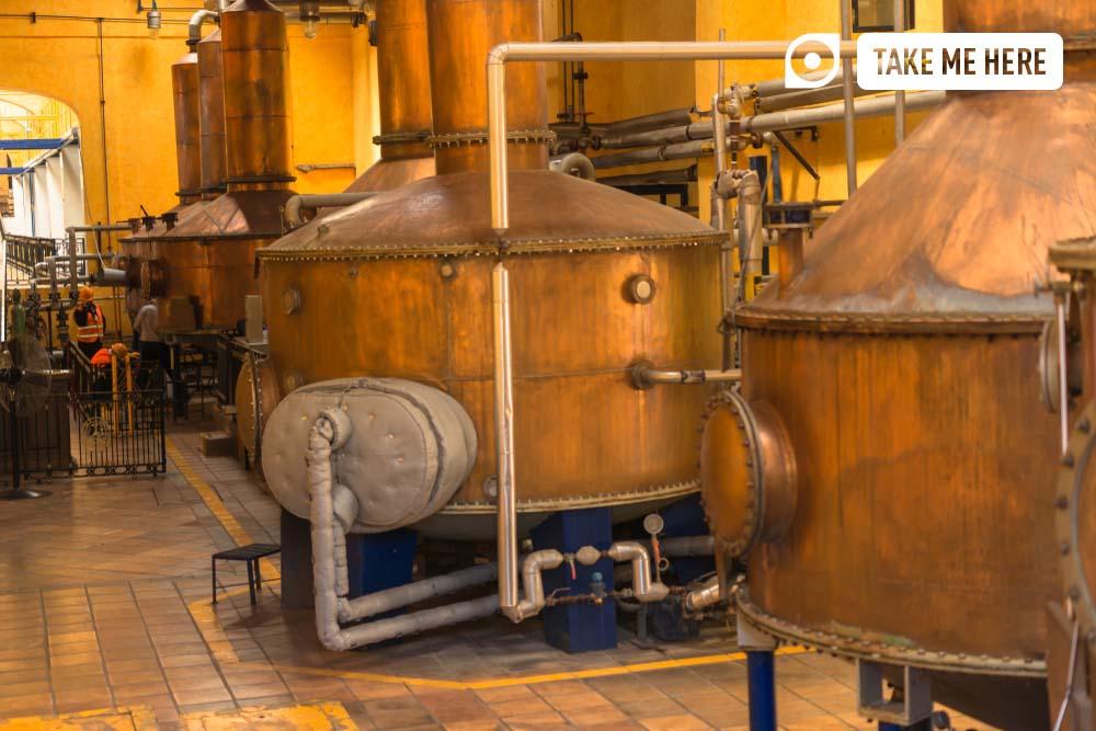 Mexican distillery