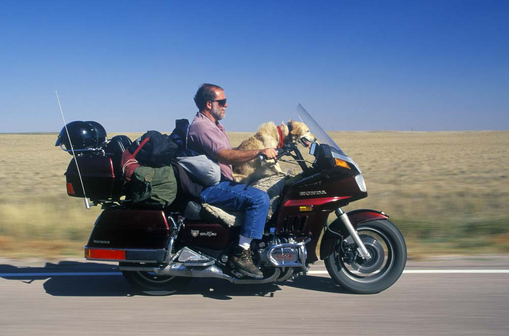 A motorcyclist with his dog cruising on the Interstate Highway in South Dakota. Photo: Shutterstock