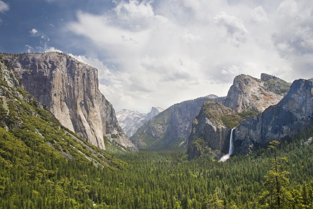 Yosemite National Park. Photo: deckard_73/Shutterstock