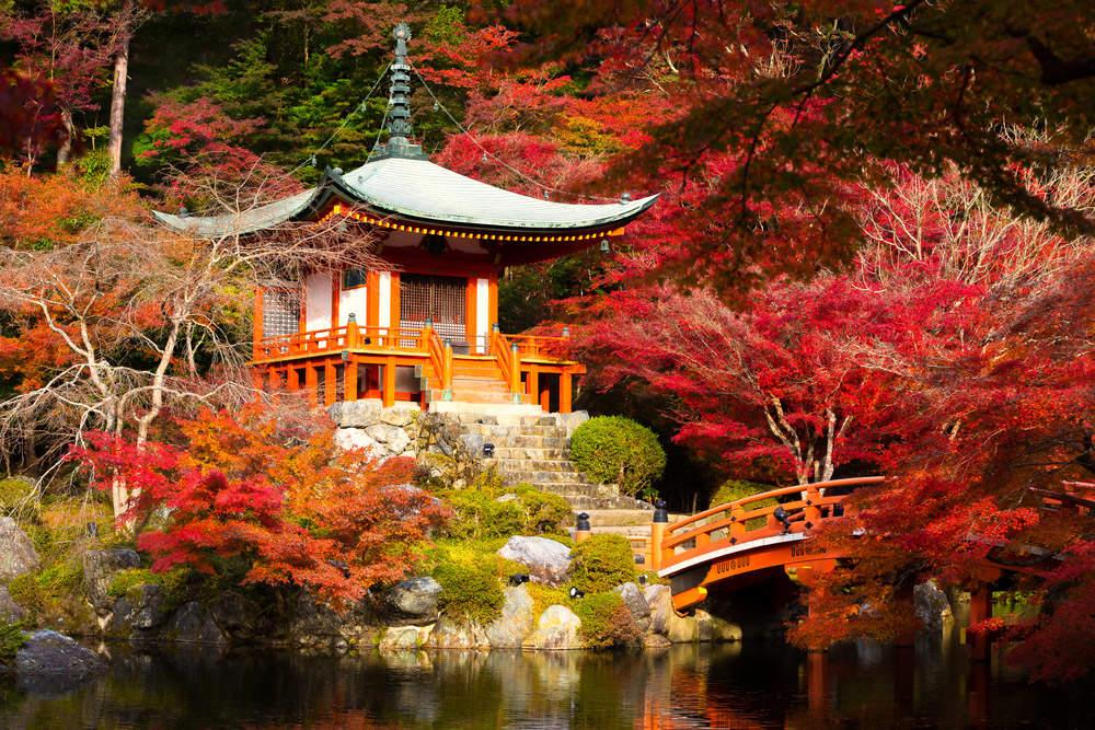Daigoji Temple, Kyoto Japan. Photo: Shutterstock