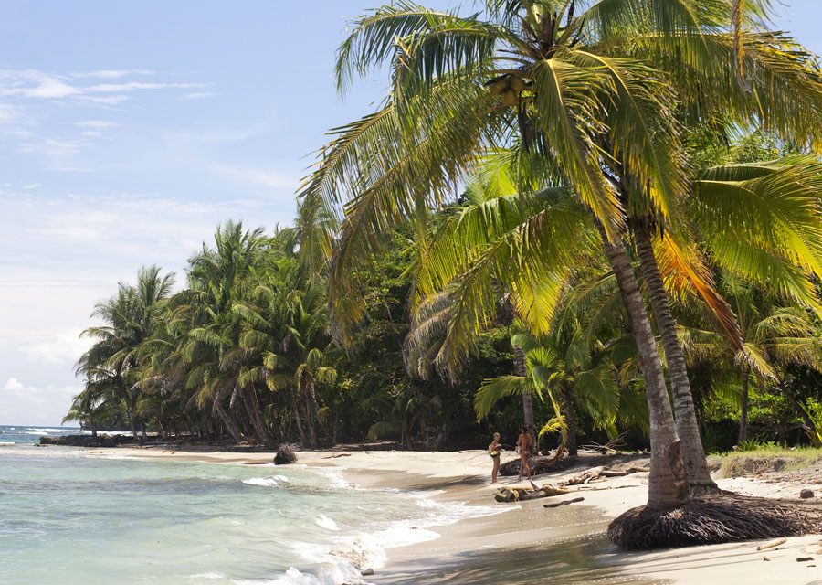 Punta Uva is one of the finest beaches on Costa Rica's Caribbean coastline.