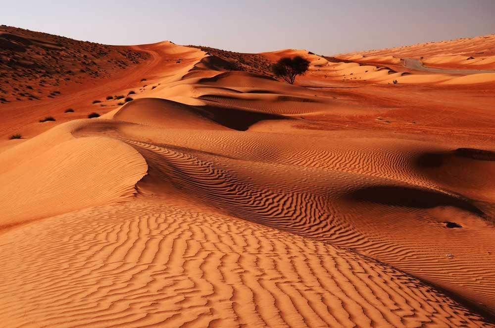 Sandy desert Wahiba in Oman