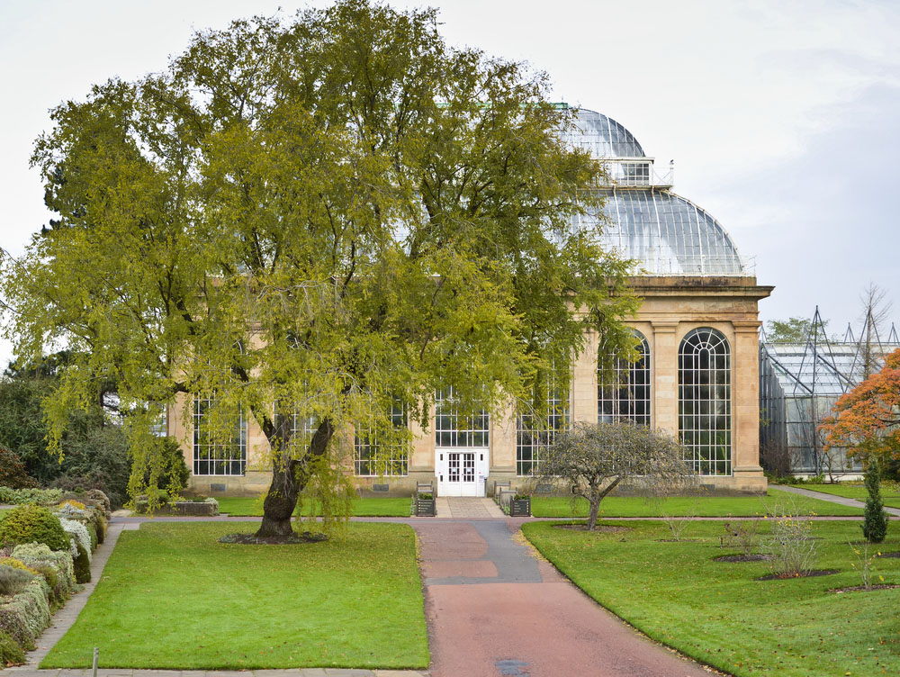 Botanical Gardens, Edinburgh, Scotland. Photo: Shutterstock