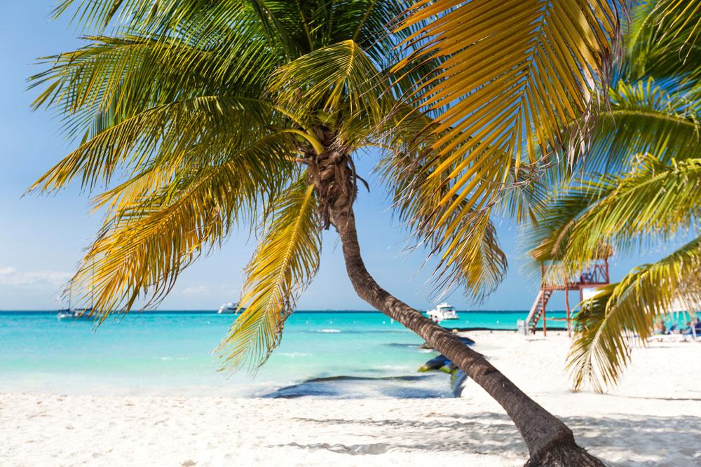 Playa Norte in Isla Mujeres, Mexico. Photo: Shutterstock