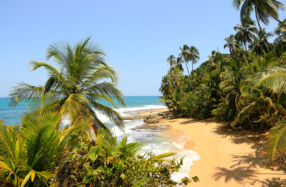 Beautiful beach in Manzanillo, Costa Rica. Photo: Shutterstock