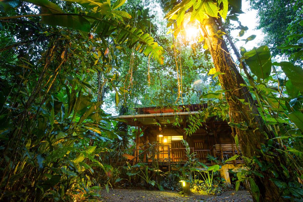 Costa Rica, eco lodge in the rainforest at Puerto Viejo de Talamanca. Photo: Shutterstock