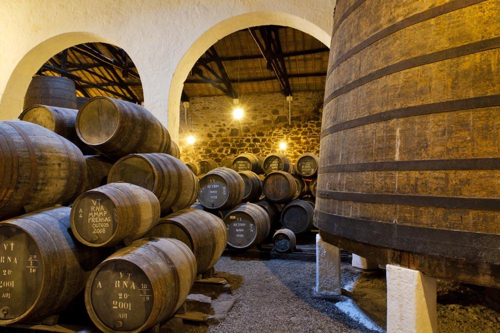 Port wine cellar.