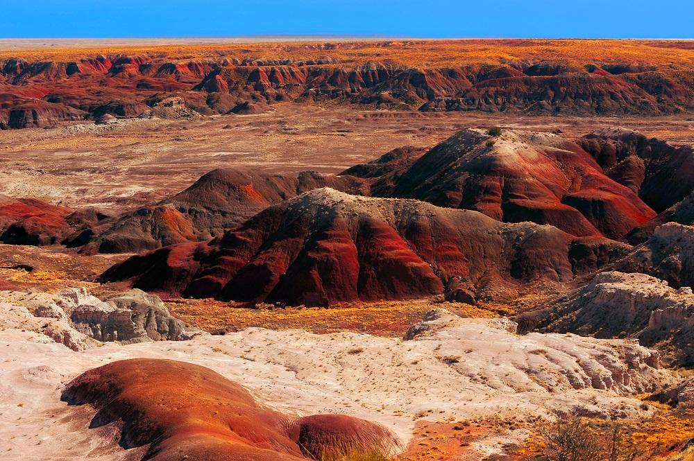 Painted Desert, Arizona. Photo: Laurin Rinder/Shutterstock