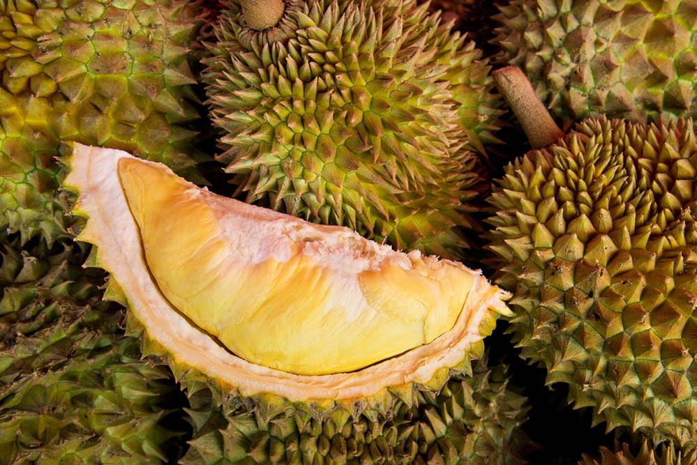Peeled yellow Mon Thong durian on heap of durian fruits. Photo: Shutterstock
