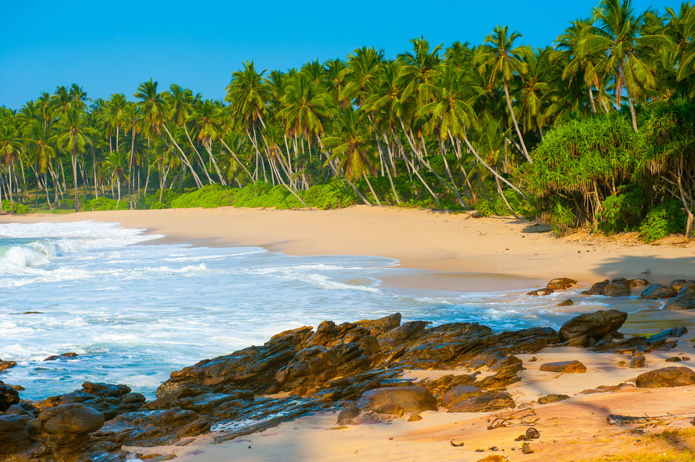 Tropical beach near Tangalle. Photo: Shutterstock