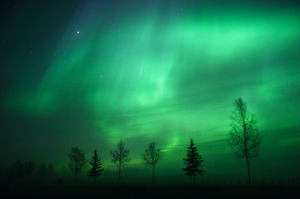 Aurora Borealis near Fairbanks. Photo: Roman Krochuk/Shutterstock