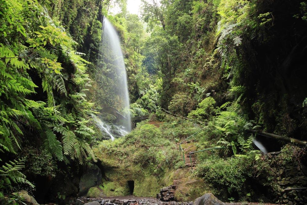 Waterfall at Los Tilos, La Palma, Canary Islands.