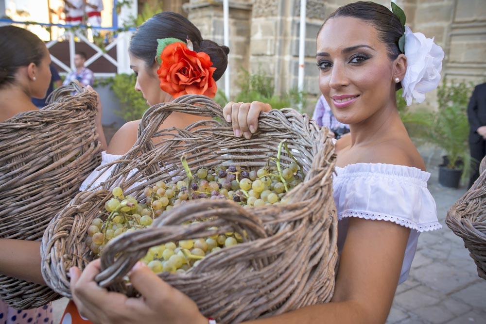 Fresh grapes at Jerez de la Frontera.
