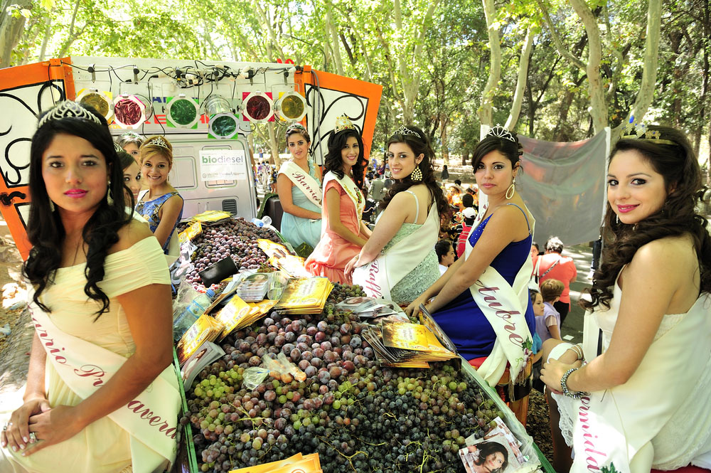 Vendimia, Mendoza's annual grape harvest festival, Photo: Shutterstock