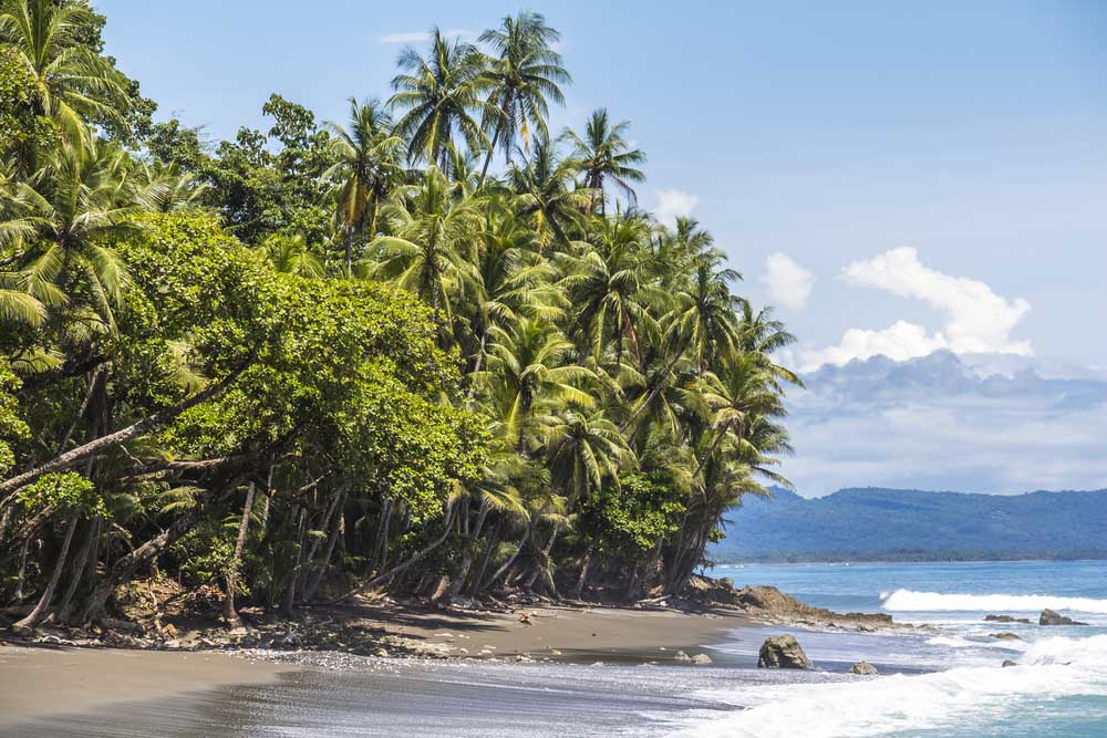 Beach and jungle in Corcovado National Park. Photo: Shutterstock