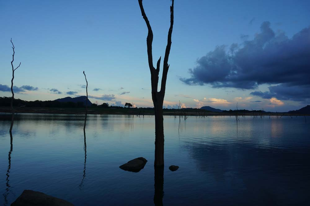 Senanayaka Lake, Sri Lanka's largest, is ideal for a boat safari.