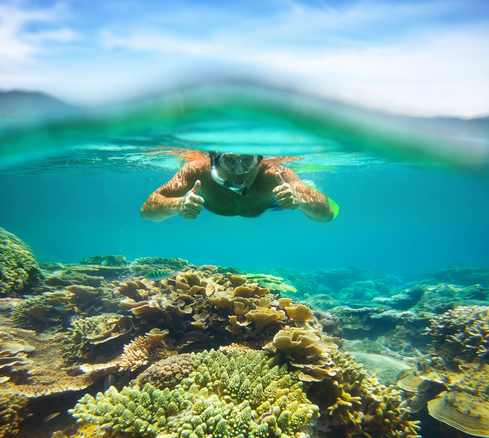 Snorkelling in Nha Trang. Photo: soft_light/Shutterstock