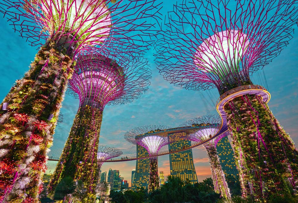 Supertrees at Gardens by the Bay, Singapore. Photo: Shutterstock
