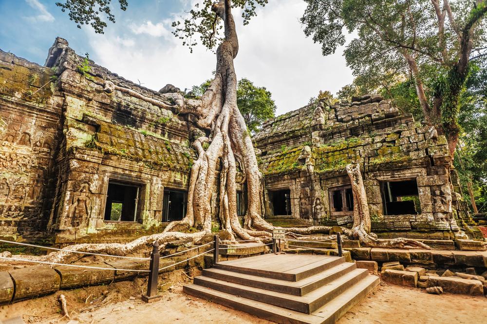 Ta Prohm Temple. Photo: Kushch Dmitry/Shutterstock