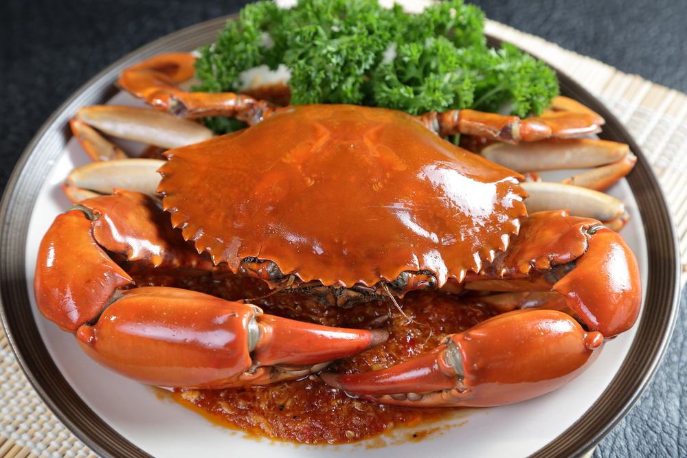 Singapore chilli mud crab.