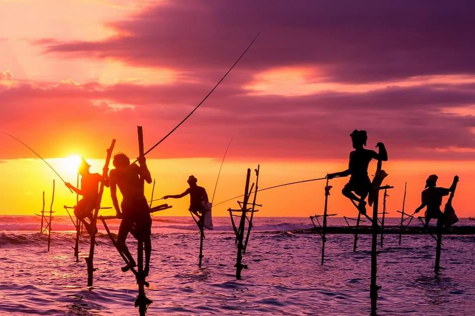Traditional stilt fishermen in Sri Lanka