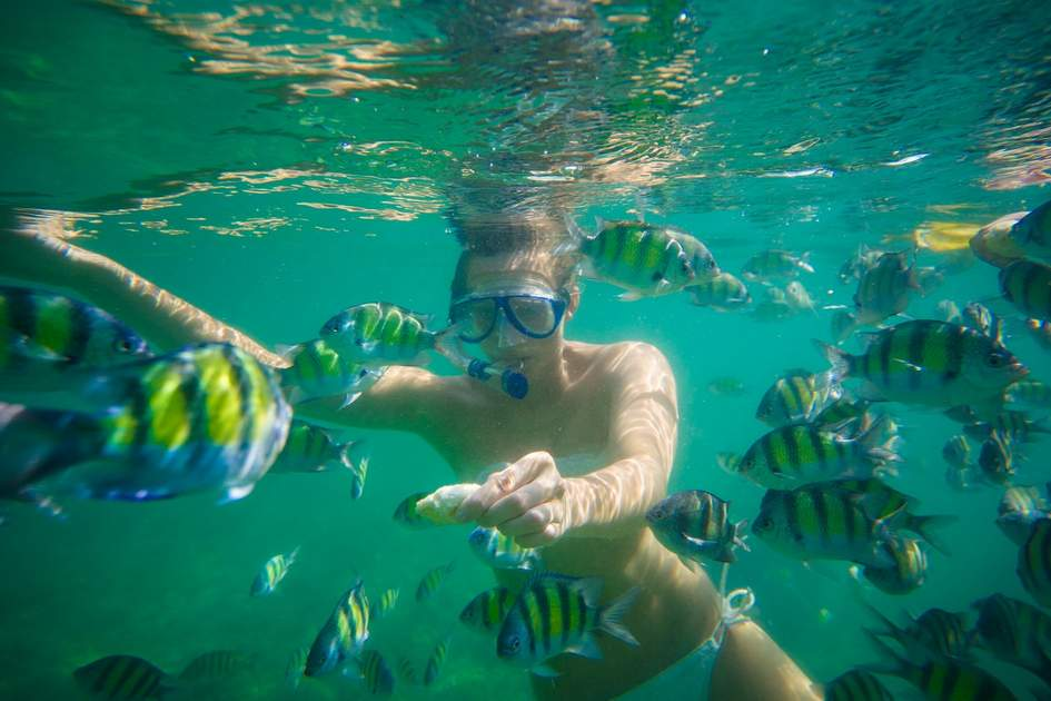 Krabi thailand tourists snorkeling with exotic fishes for Fishing beaches near me