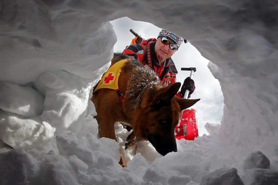 Avalanche rescue training. Photo: Shutterstock