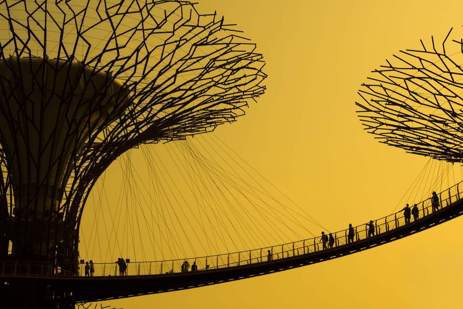 Silhouette of Gardens by the Bay, Singapore.
