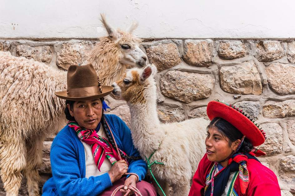 Traditonally clothed peruvian women with llamas.