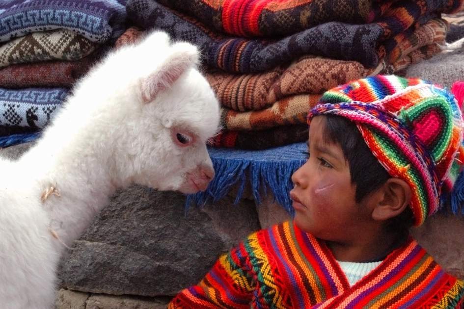 Peruvian boy in traditional clothing with baby llama. Photo: Shutterstock