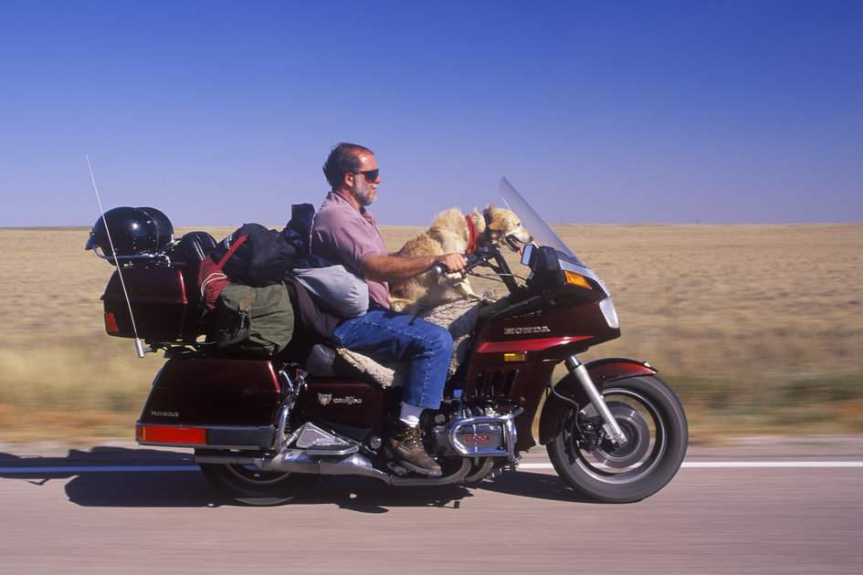 A motorcyclist with his dog cruising on the Interstate Highway in South Dakota