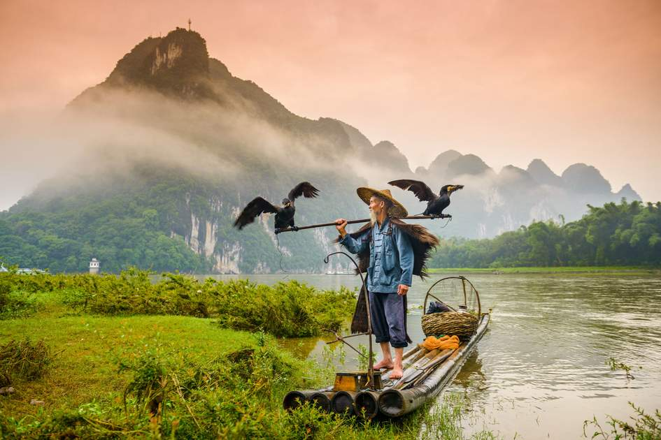 A fisherman and his cormorants on the Li River, China