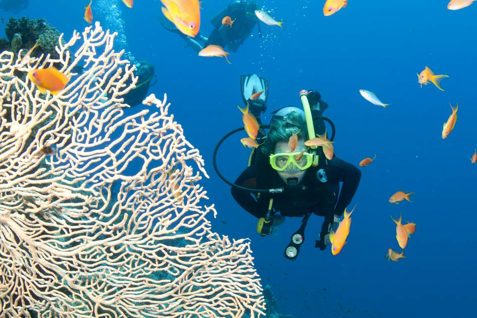 Snorkelling in Thailand: Some of Asia's best dive sites explored.