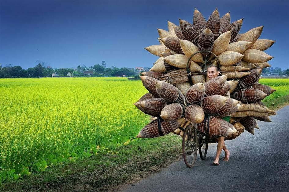 A man transports bamboo fishing baskets near Tat Vien village, Hung Yen Province, Vietnam.