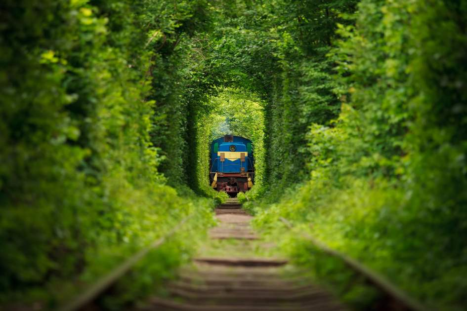"The ""Tunnel of Love"", a fairytale railway in Klevan, Ukraine"