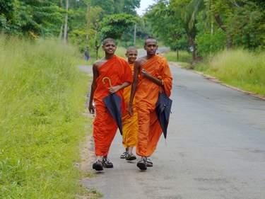 Sri Lankan monks