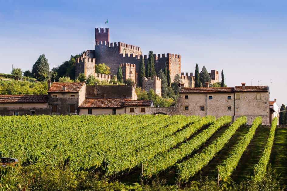 View of Soave in Italy surrounded by vineyards. Photo: Shutterstock