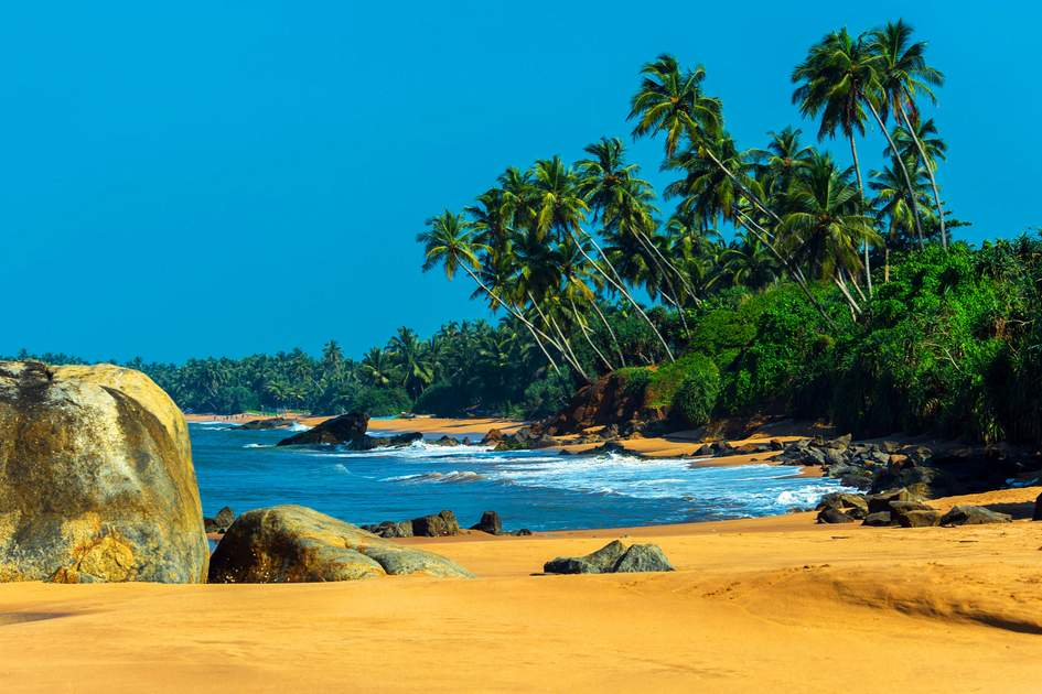 Sri Lankan coast. Photo: Shutterstock