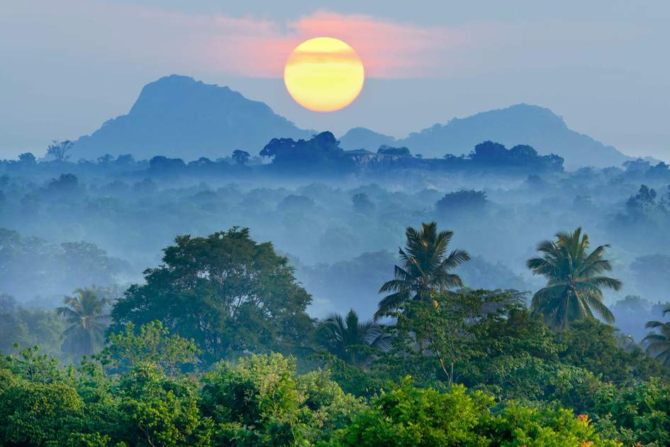 Sunrise in the jungles of Sri Lanka. Photo: Shutterstock