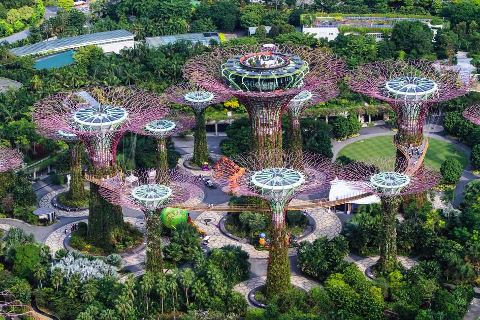 The 'Supertrees' at Gardens by the Bay, Singapore