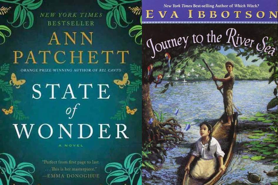 "A compilation of covers of Amazon books: ""A State of Wonder"" and ""The Journey to the River Sea"". Source: Amazon"