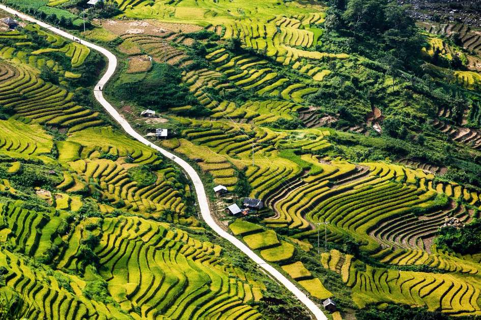 vietnam landscape, Terraced rice fields in Y Ty, LaoCai Province, VietNam.