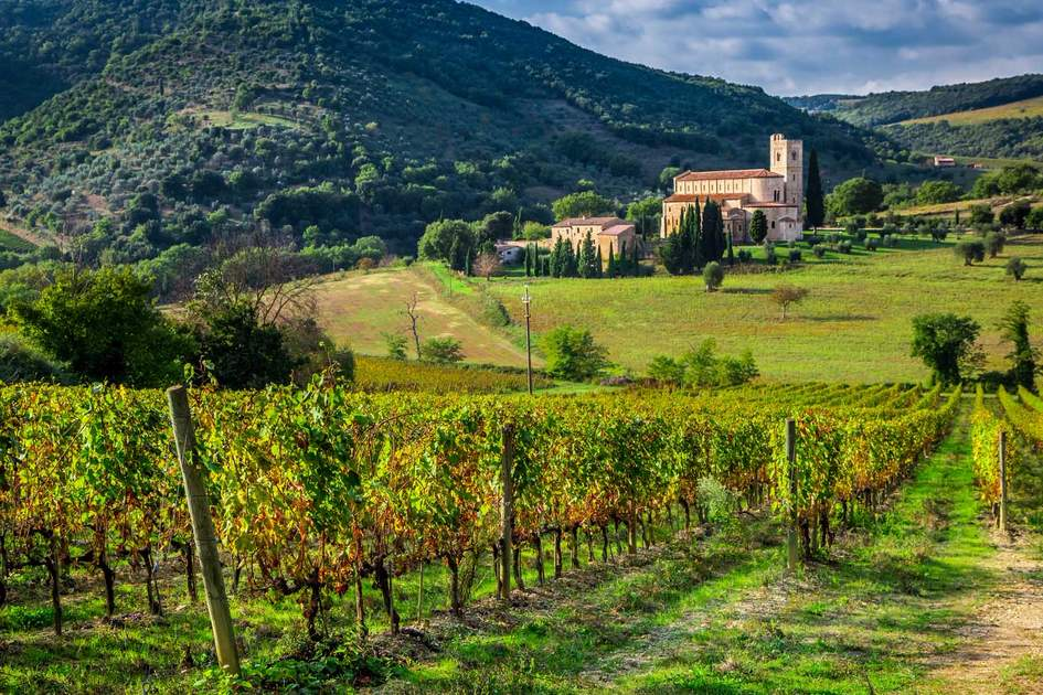 Vineyards and the monastery in Tuscany
