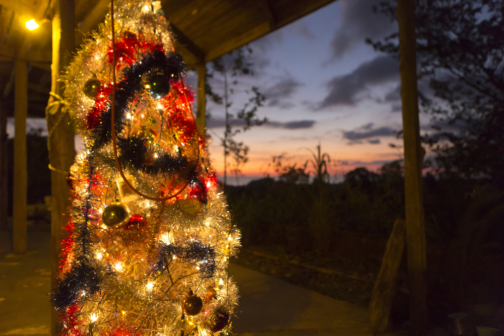 Colourful sunset and Christmas tree in Matapalo, Costa Rica