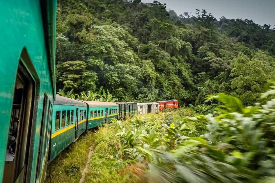 Train going through beautiful lush rainforest between the high plateau city of Fianarantsoa and the port-city of Manakara. Photo: Shutterstock