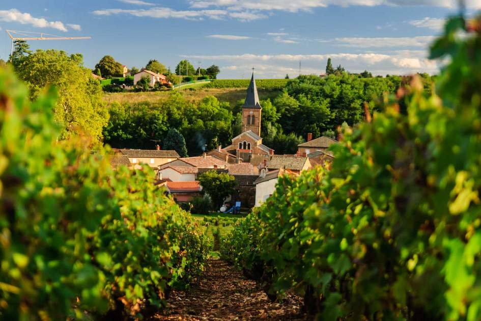 Saint Julien in region Beaujolais, France
