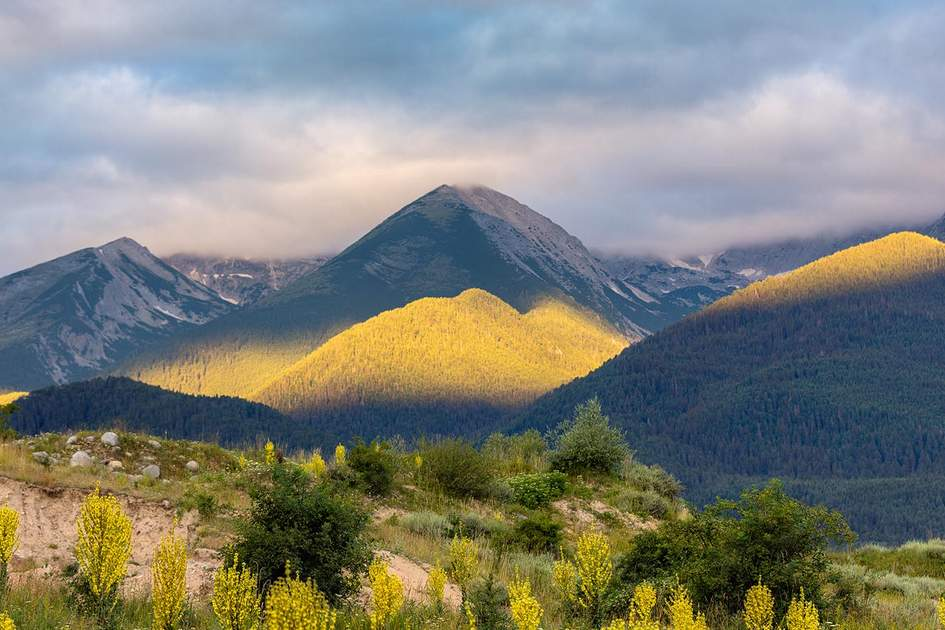 Pirin National Park, Bulgaria. Photo: Vladimir Petrakov/Shutterstock