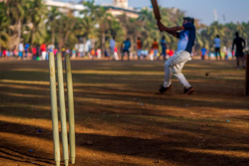 Cricket in India. Photo: Shutterstock