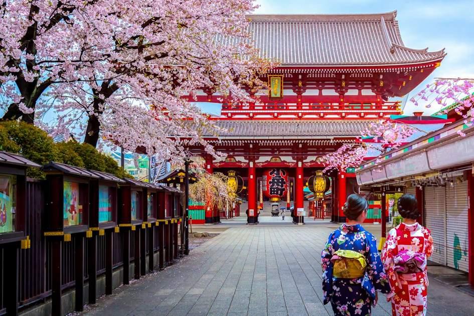 Geishas wearing traditional kimonos at Sensoji Temple in Asakusa, Tokyo, Japan. Photo: Phattana Stock/Shutterstock