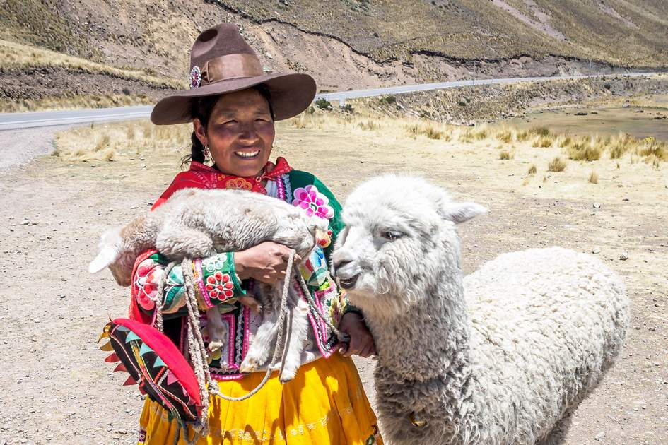 A native Peruvian with her alpacas. Photo: RObertCHG/Shutterstock